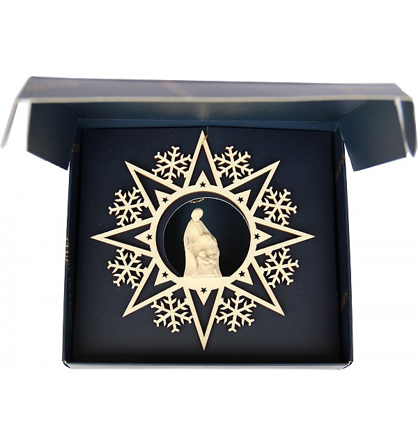6555 - Star with Nativity Block