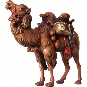 6035 - Camel with baggage